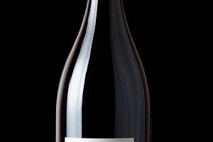 Shiraz red wine on black