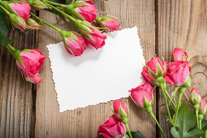 Pink roses and card
