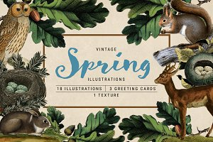 Vintage Spring Illustrations