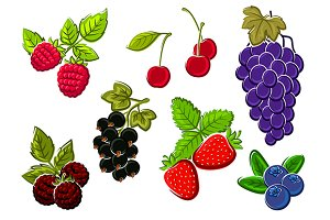 Ripe berry fruits set