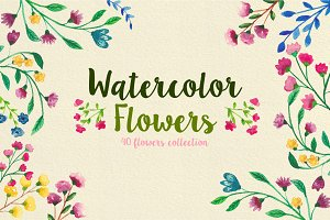 40 Watercolor spring, summer flowers