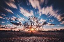 Sunset Movement