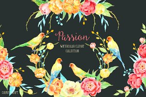 Watercolor Clipart Passion Peonies