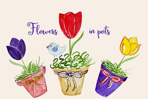 Watercolor flowers in pots.