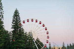 Ferris Wheel Sunset