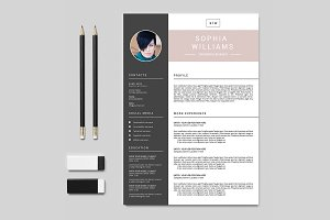 Resume Template 3 Pack | V017