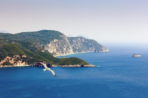 Corfu (Kerkyra) Island, Greece. Seagul and rocky cape.