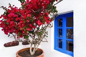 White house, Santorini, Oia