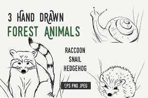 Hand drawn RACCOON SNAIL HEDGEHOG