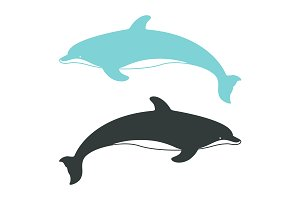 Atlantic Bottlenose Dolphins.