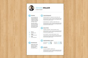 3 Page Professional Resume-V018