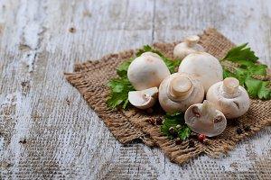 Raw champignon mushroom