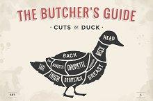 Cut of meat set. Butcher sheme. Duck