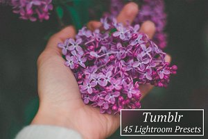 45 Tumblr Lr Presets
