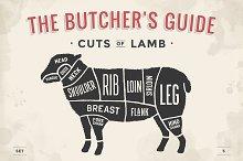 Cut of meat set. Butcher sheme. Lamb