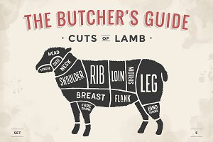 Cut of meat set. Butcher sheme. Lamb