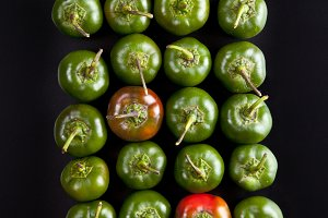 group hot pepper