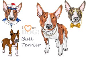 Bull Terrier Dog smiling SET