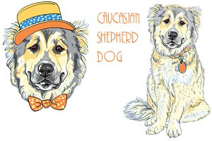 Caucasian Shepherd Dog SET