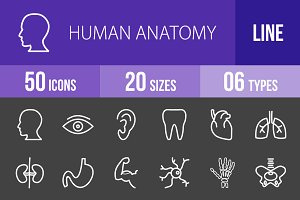 50 Human Anatomy Line Inverted Icons