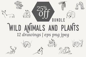 25% off BUNDLE wild animals + plants