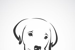 Vector of an labrador puppy face