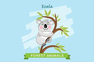 Koala Vector, forest animals.