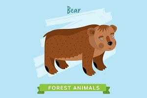 Bear Vector, forest animals.