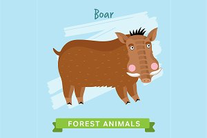 Boar Vector, forest animals.
