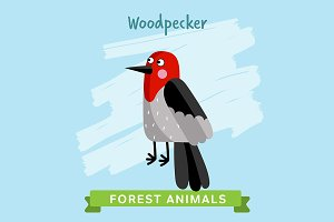 Woodpecker Vector, forest animals.