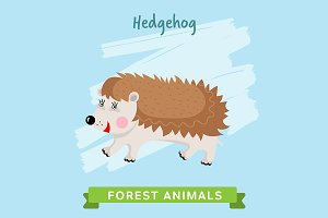 Hedgehog Vector, forest animals.