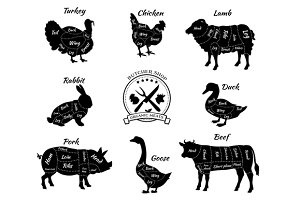 Animals for Butcher Shop