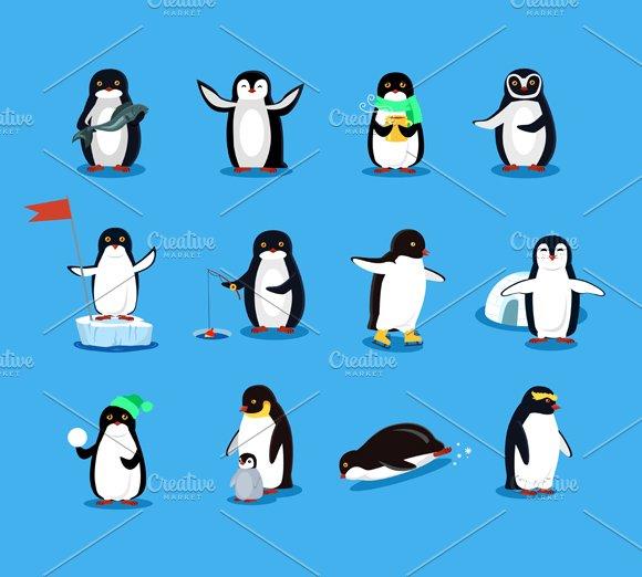 Set of Animal Pinguin Design Flat