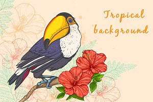 Background with flowers and toucan