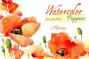Watercolor Poppies.Flowers set+Bonus