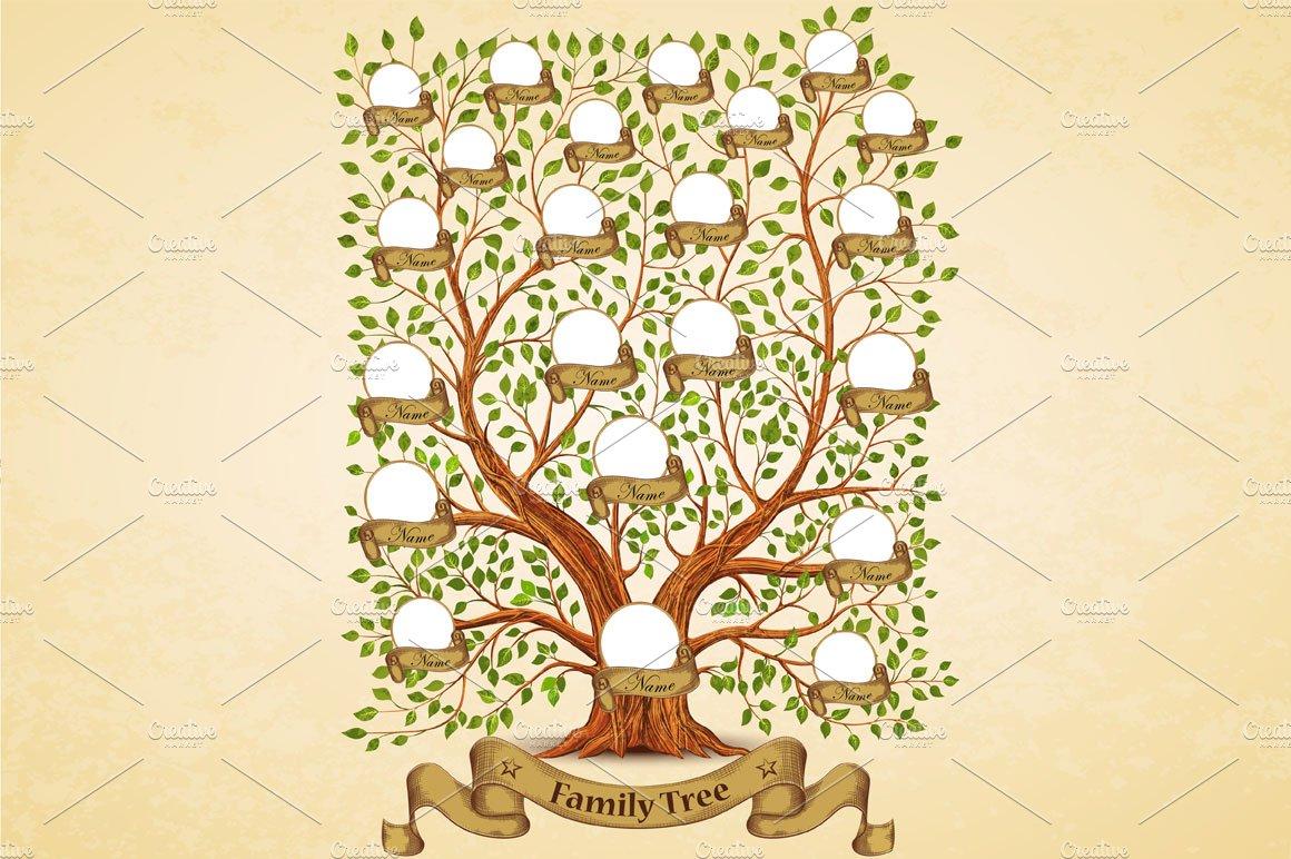 Family Tree Template Vintage Illustrations Creative Market