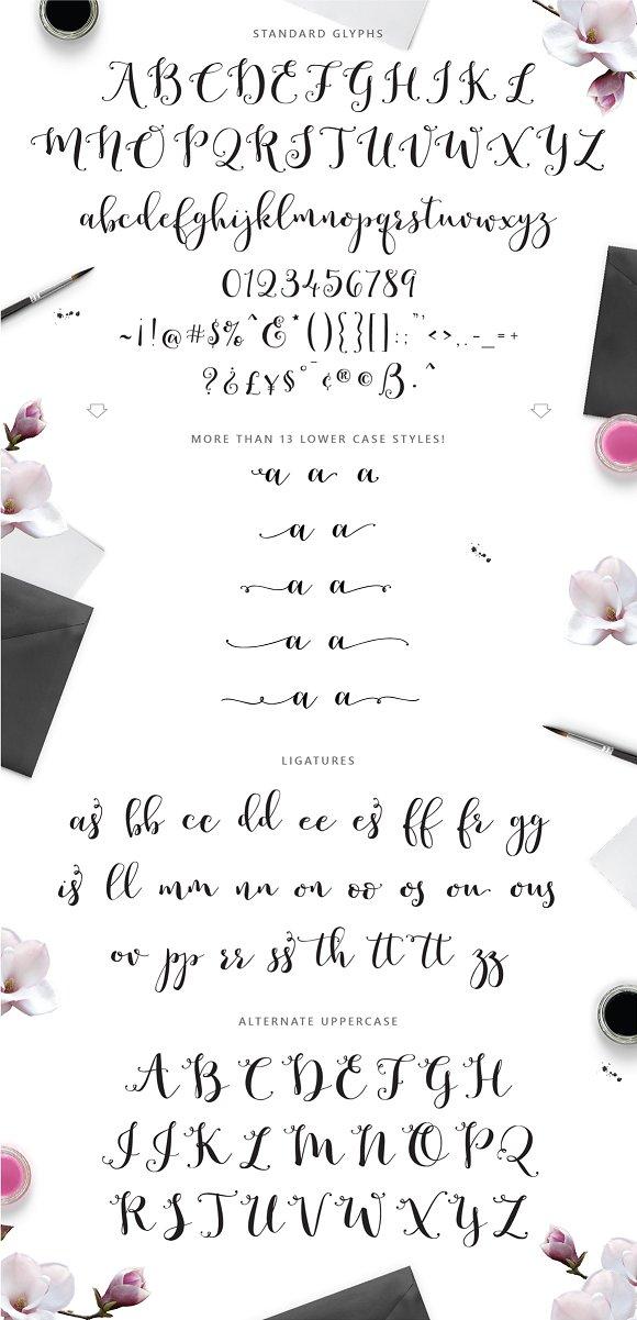 Romantic Script ~ Script Fonts ~ Creative Market