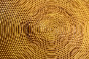 Circle gold steel background