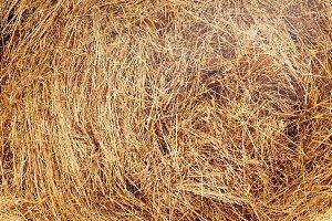 Haystack after harvest texture