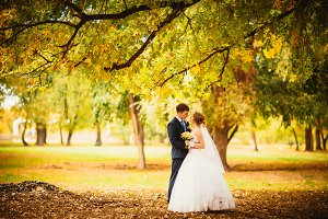 young bride and groom on the background of autumn landscape