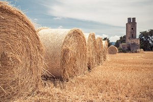 Straw bales field