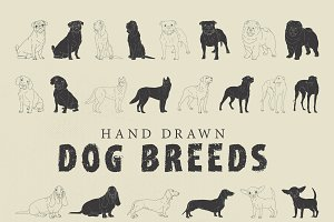 Hand Drawn Dog Breeds Vector 1