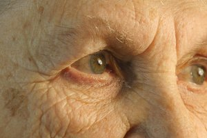 Close-up portrait of a old woman's gaze