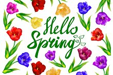 Tulip hello spring