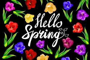 Hello spring! on blackboard