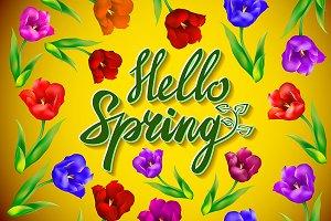 Hello Spring Poster Design