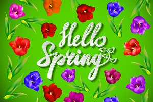 Hello Spring Vector Design