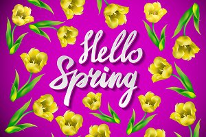 hello Spring Pikn