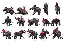 Elephant show and training with maho
