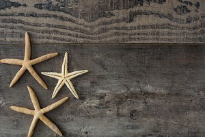 Starfish on a rustic wood background